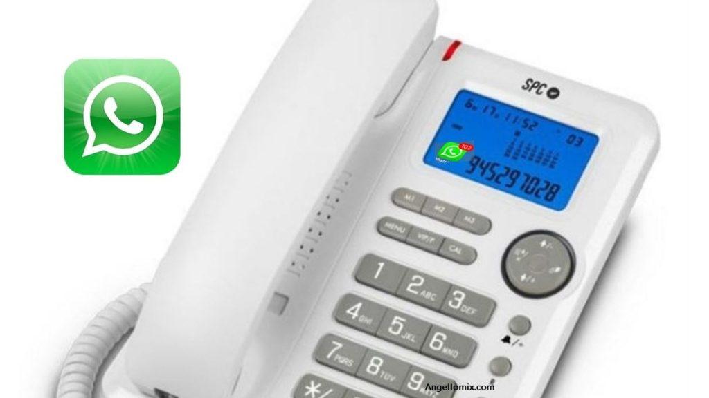 cropped Whatsapp Business en telefono fijo 2019 fijo